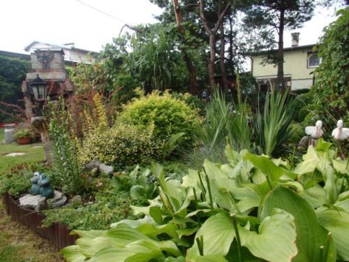 Konkurs najpiękniejszy ogród - ul. Rybnicka 205